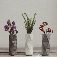 Geometric Vases with Dry Flowers